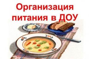 Опрос по организации питания
